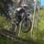bikingbunny